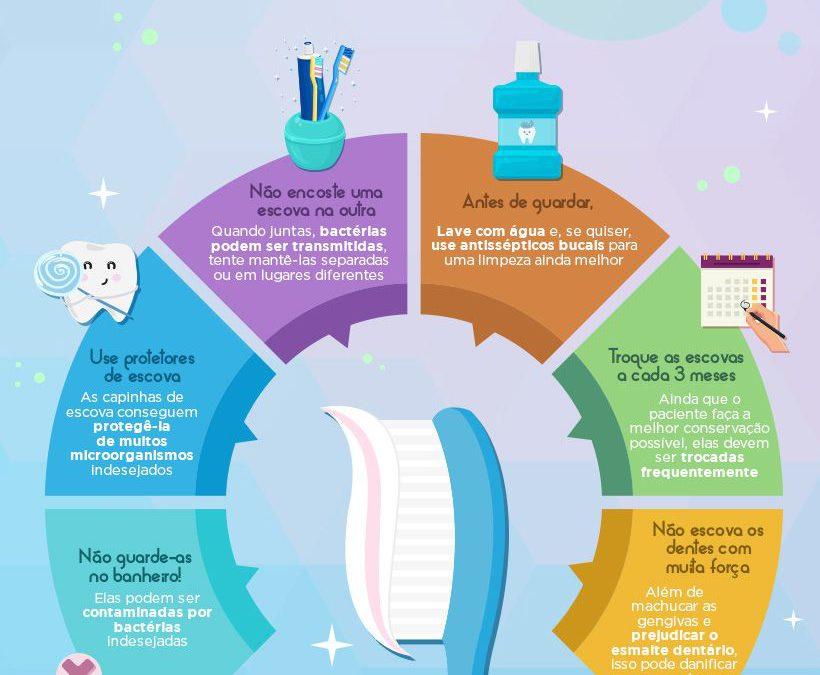 Qual é a forma certa de guardar e conservar as escovas de dentes?