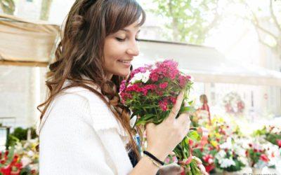 Flores e plantas proporcionam mais harmonia na sua casa e na sua vida